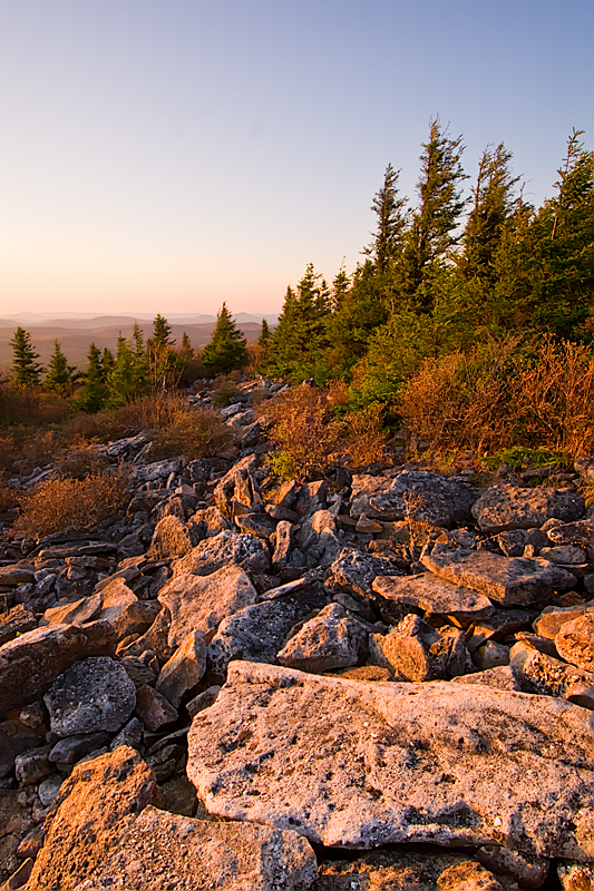 Late afternoon on Spruce Knob
