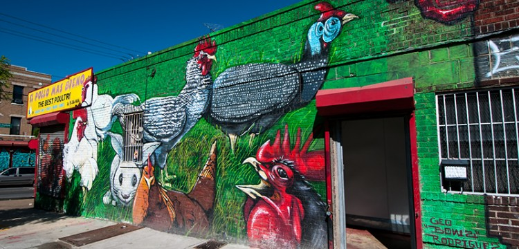 El Pollo mas Bieno a mural on the Best Poultry factory in Bushwick photographed by David Muse
